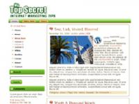 Top Secret WP Theme