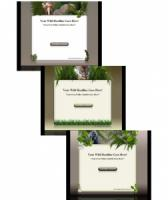 Wild Life Templates Mini Site