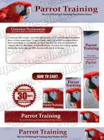 Templates - Parrot Training