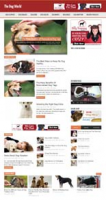 Dog World Niche Blog