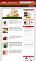 Chicken Raising Niche Blog
