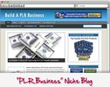 PLR Business Blog