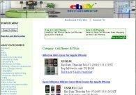 EBay Cash Flow Site