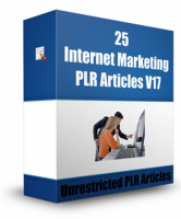 25 Internet Marketing PLR Articles V 17