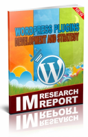 WordPress Plugin Strategy And De...