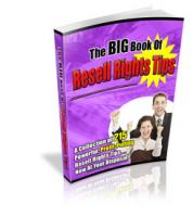 The Big Book Of Resell Rights Ti...