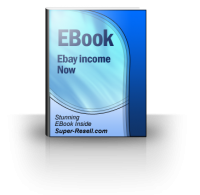 Ebay Income Now