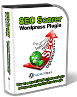 SEO Scorer WP Plugin