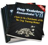 Dog Training Essentials V2