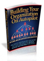 Building Your Organization On Au...